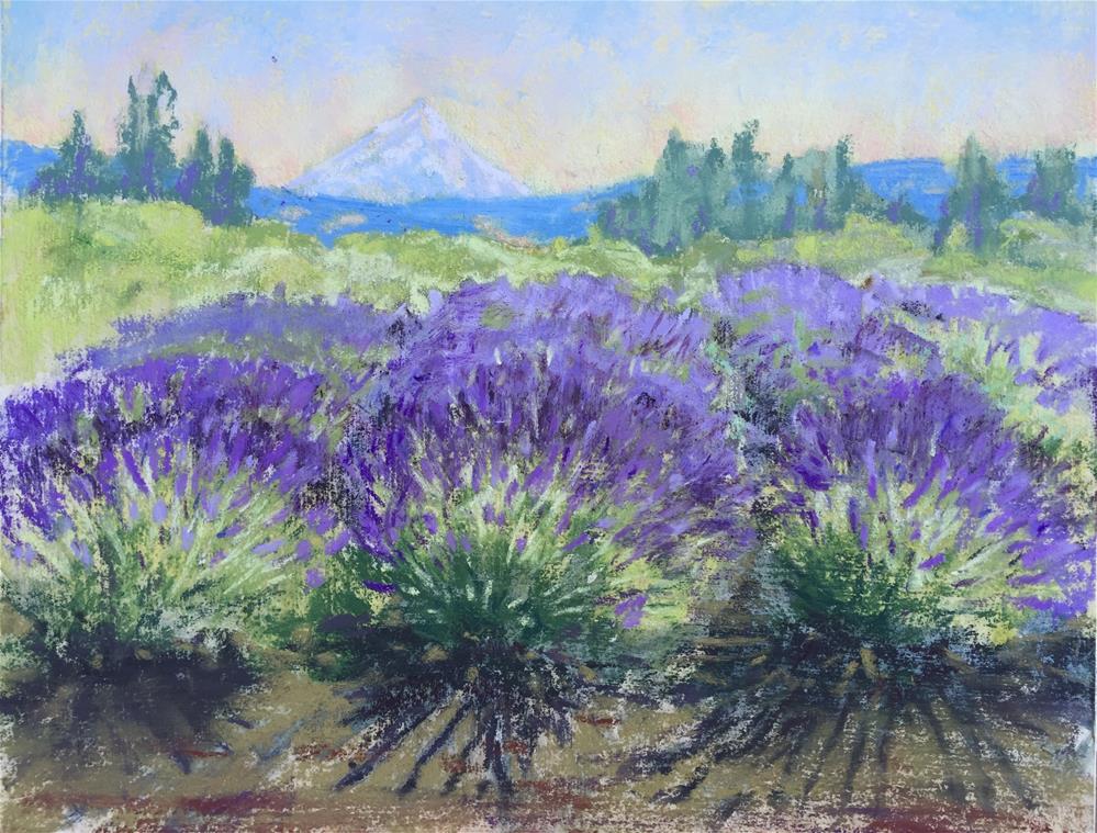 """Lavender in bloom"" original fine art by Natasha Ramras"
