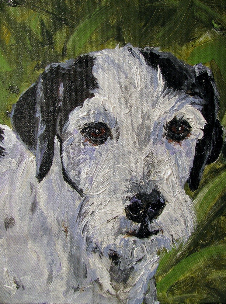"""Booker"" original fine art by Susan Elizabeth Jones"