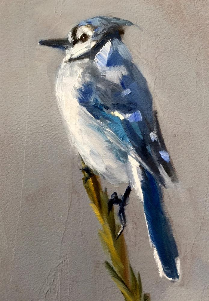 """Blue Jay"" original fine art by Gary Bruton"