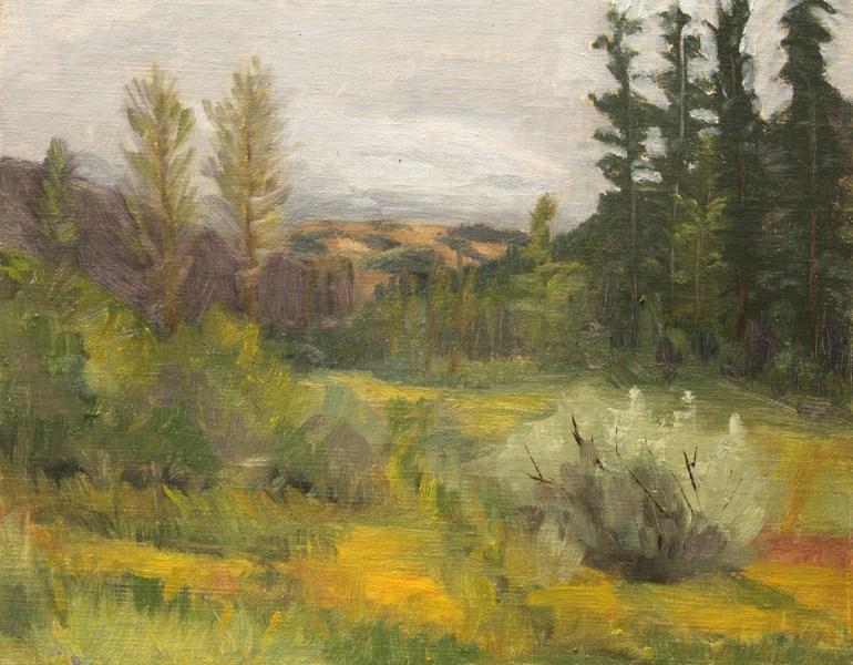 """""""Chapman Meadow"""" original fine art by Jane Frederick"""