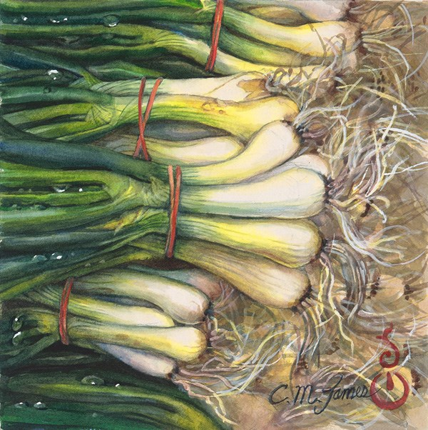 """Spring Onions"" original fine art by Catherine M. James"