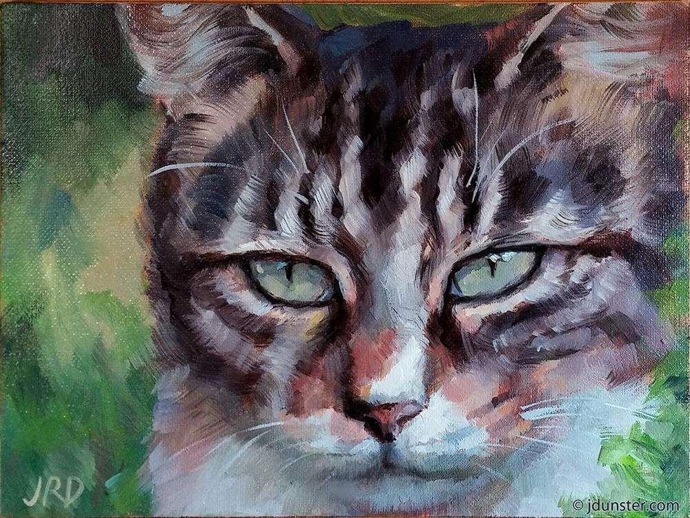 """Fluffy Cat in the Grass"" original fine art by J. Dunster"