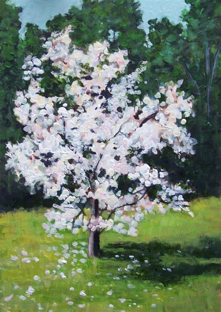 """""""Magnolia Tree"""" original fine art by Joan Matero"""