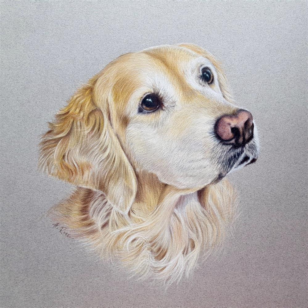 """""""Dana"""" original fine art by Heidi Rose"""