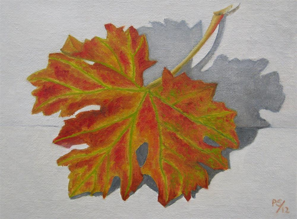 """Autumn Vine"" original fine art by Pera Schillings"