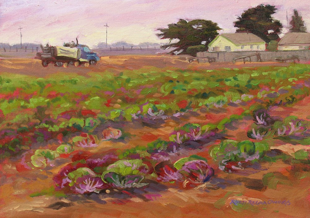 """Radicchio Field Just Harvested"" original fine art by Rhett Regina Owings"