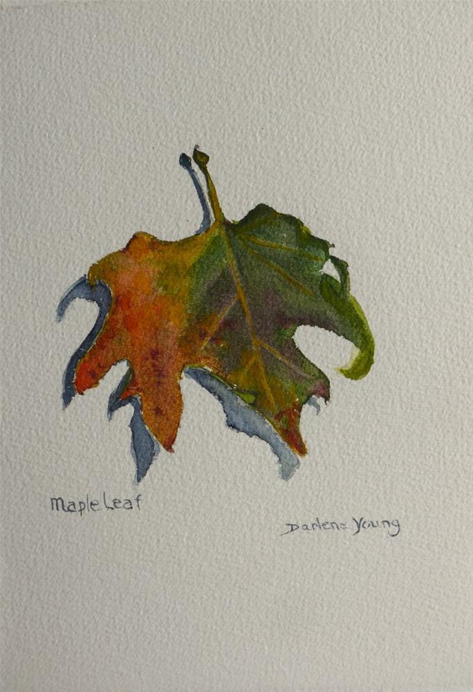 """697 Maple Leaf, Watercolour"" original fine art by Darlene Young"