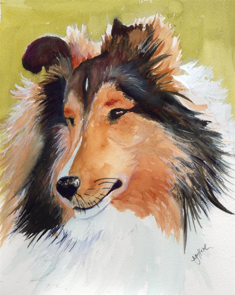 """""""Shetland Sheepdog"""" original fine art by Bunny Griffeth"""