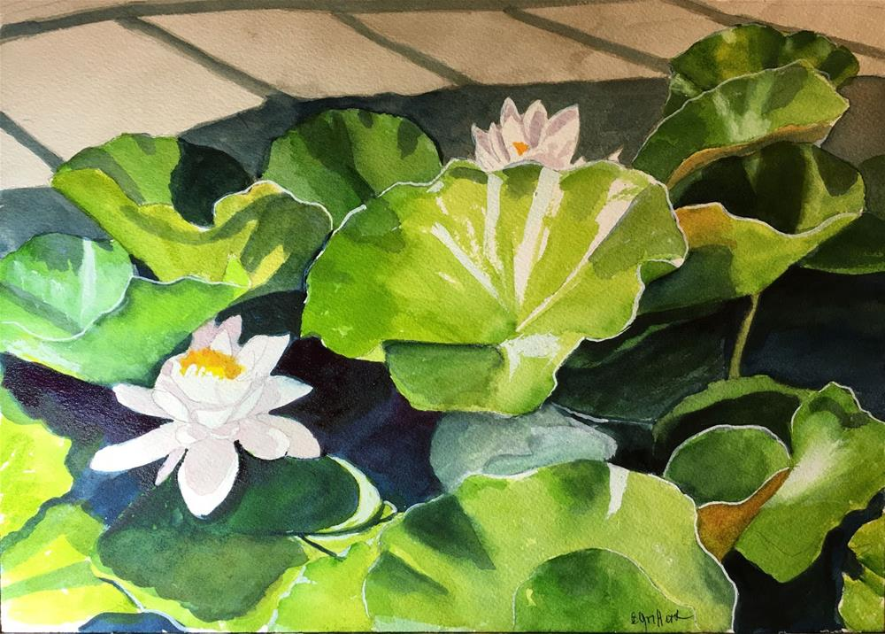 """""""water Lilies in Sunlight"""" original fine art by Bunny Griffeth"""
