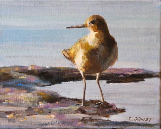 """""""Sandpiper 2"""" original fine art by Christina Dowdy"""