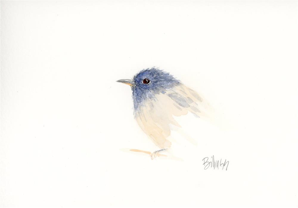 """""""Flycatcher Study I"""" original fine art by Susanne Billings"""