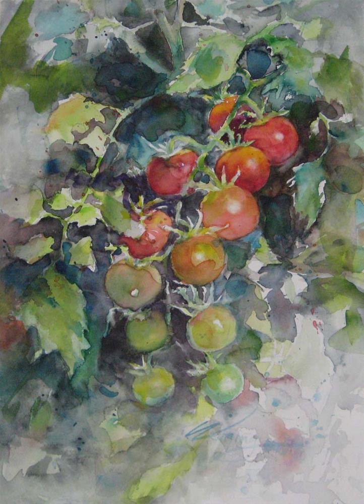 """my tomato in the garden"" original fine art by Wenqing Xu"