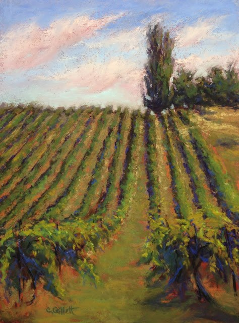 """Ste. Chapelle Vineyard"" original fine art by Cindy Gillett"