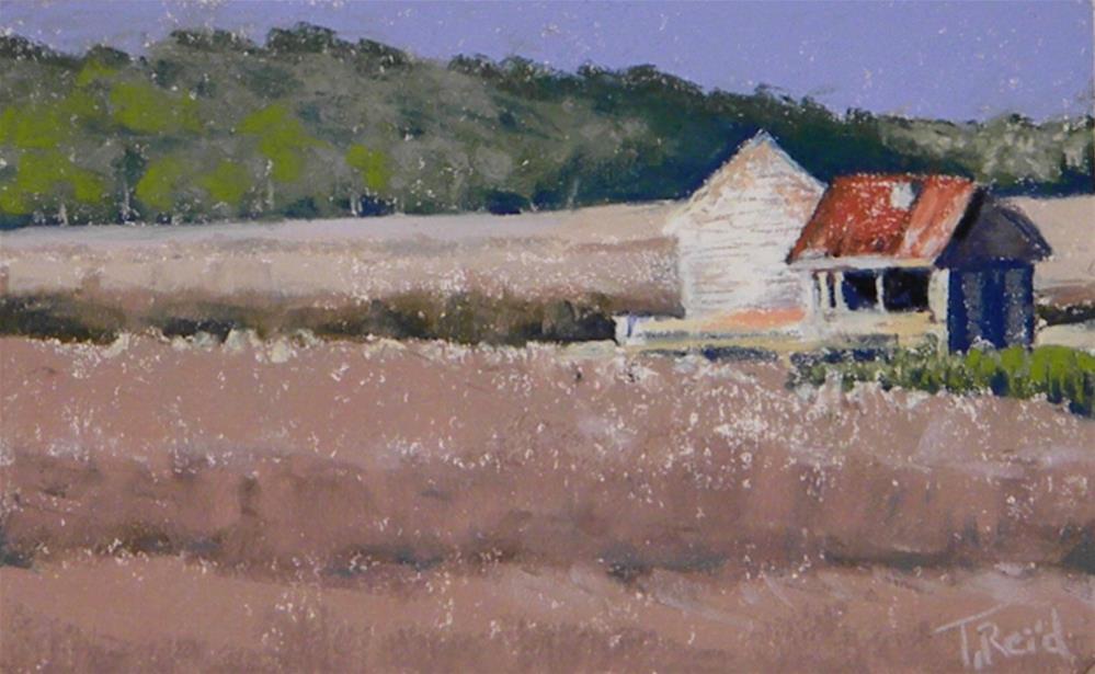 """""""Carolina Marsh Shack"""" original fine art by Toby Reid"""