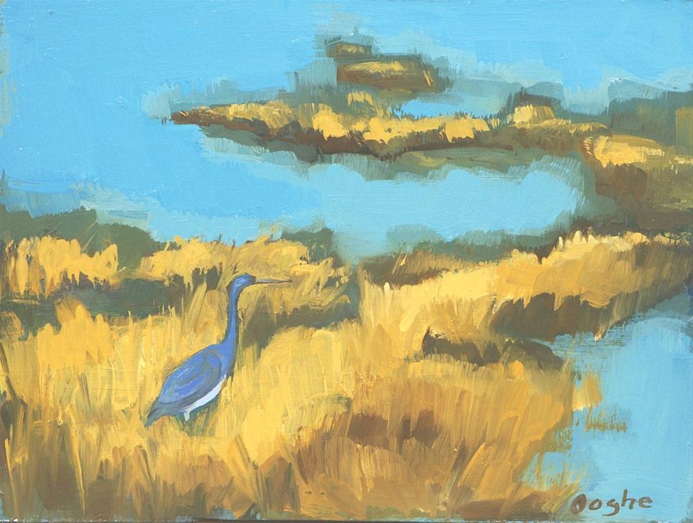 """Everglades Heron"" original fine art by Angela Ooghe"