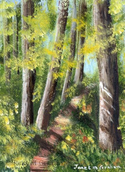 """Summer  Woods ACEO"" original fine art by Janet Graham"