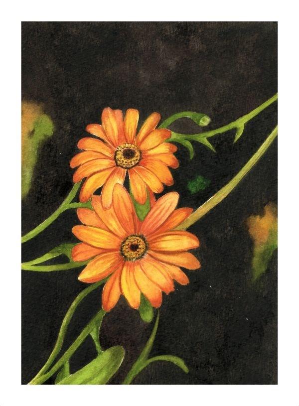 """Orange African Daisy"" original fine art by Shweta Mahajan"