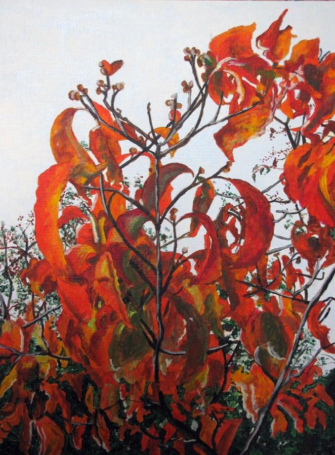 """Autumn Dogwood"" original fine art by Nan Johnson"