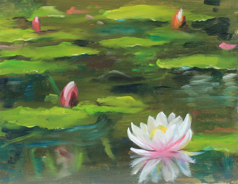 """""""waterlily pond"""" original fine art by Marco Vazquez"""