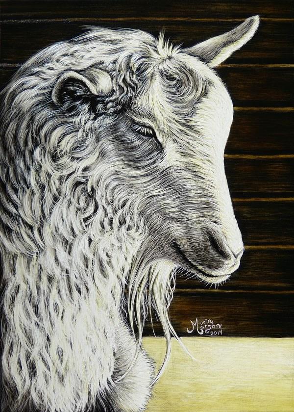 """Goat"" original fine art by Monique Morin Matson"