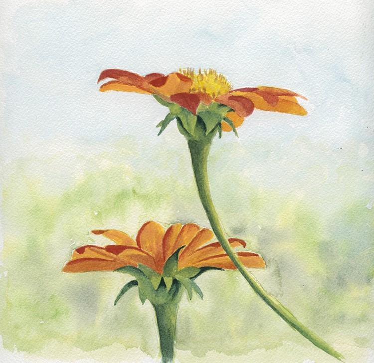 """Two Orange flowers"" original fine art by Ria Hills"