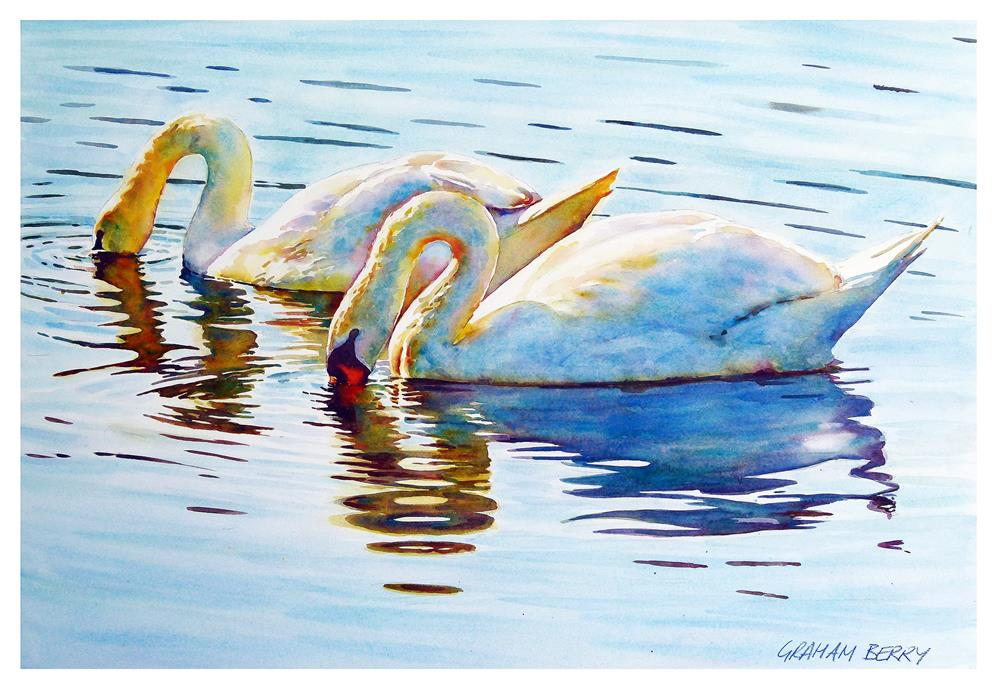 """Swans"" original fine art by Graham Berry"