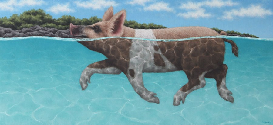 """Swimming Piglet II"" original fine art by Sarah Becktel"