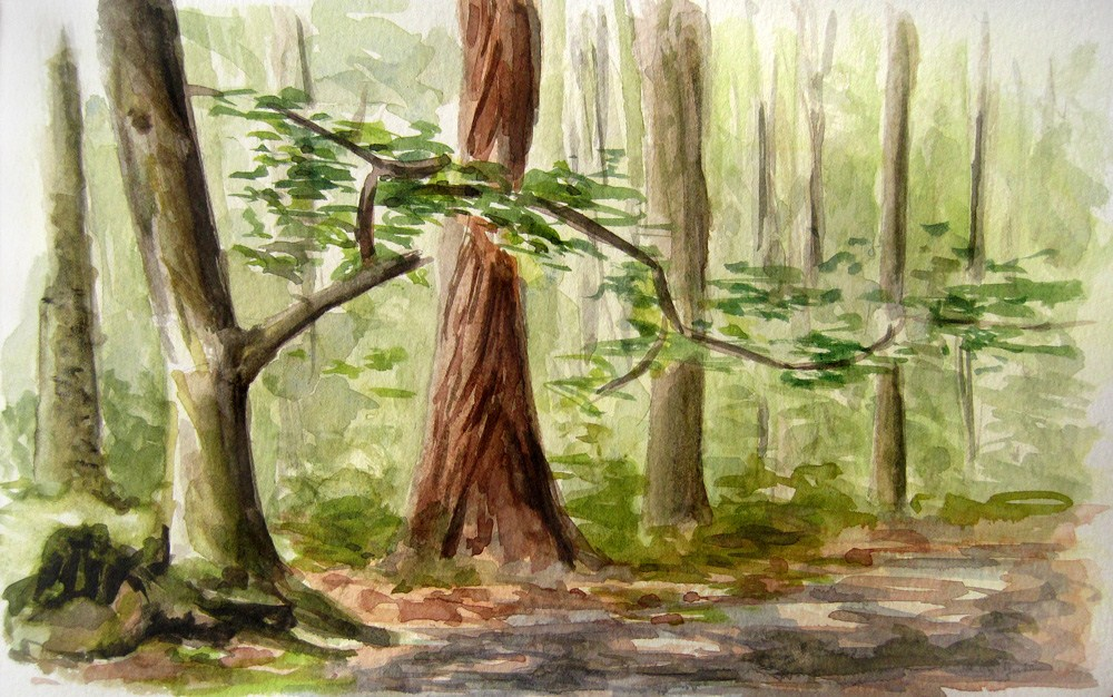 """Wood Path"" original fine art by Ulrike Miesen-Schuermann"