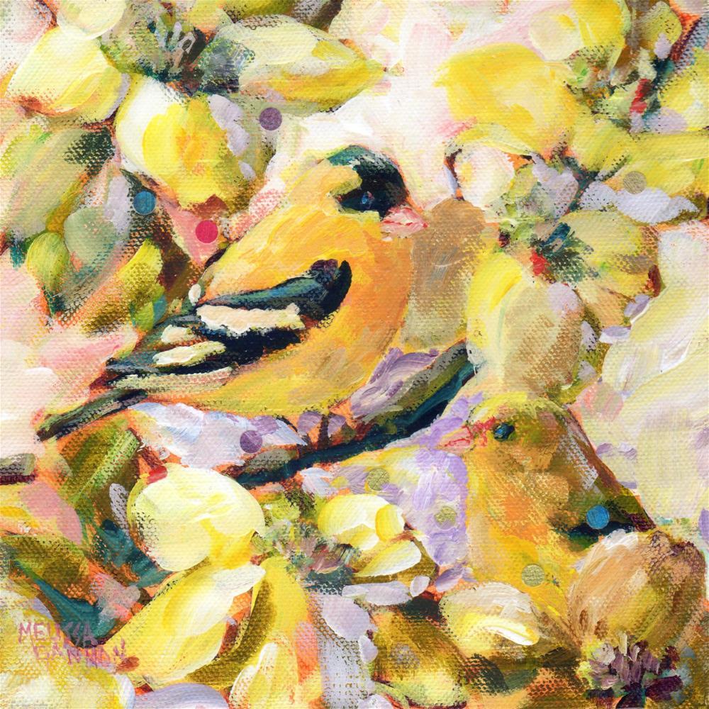"""Springtime Goldfinch"" original fine art by Melissa Gannon"