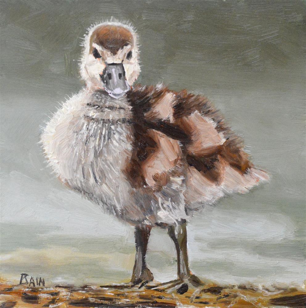 """""""Duckling"""" original fine art by Peter Bain"""