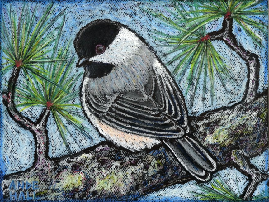 """Black Capped Chickadee"" original fine art by Ande Hall"
