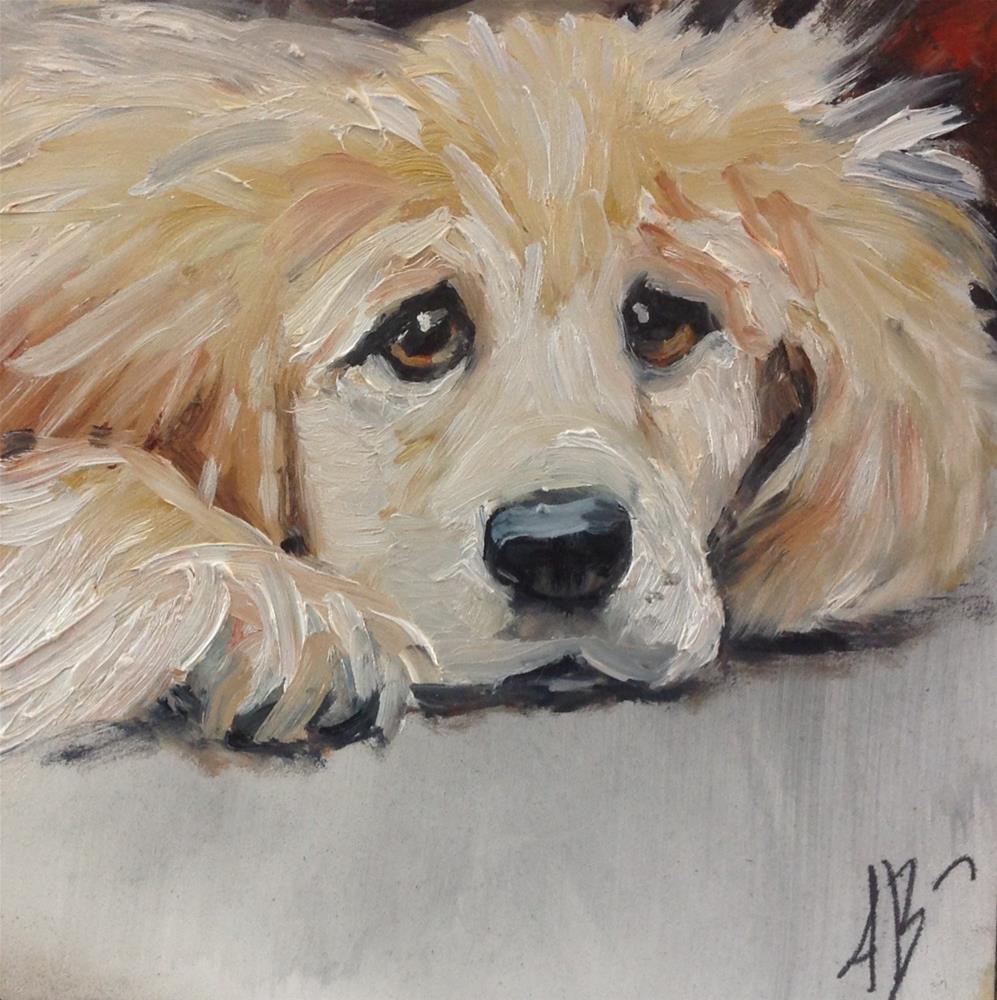 """Yellow Puppy Face"" original fine art by Annette Balesteri"