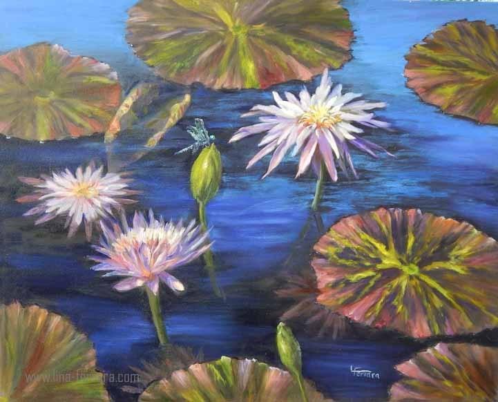 """""""Waterlilies of Longwood Garden"""" original fine art by Lina Ferrara"""