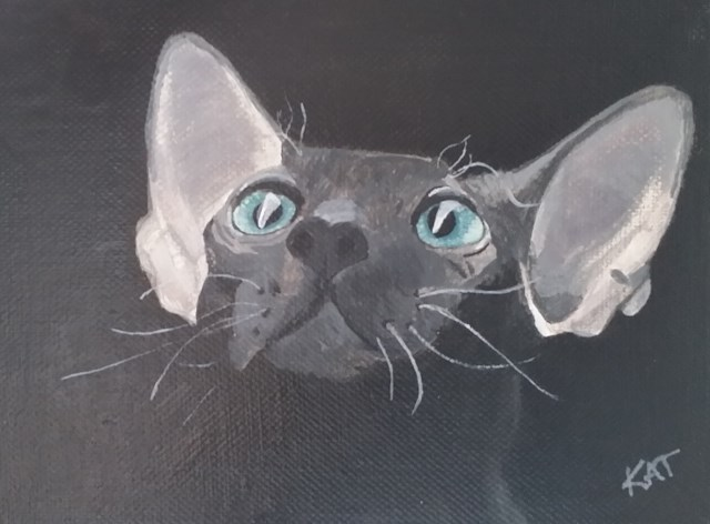 """Wiskers"" original fine art by Kathleen Carrier"