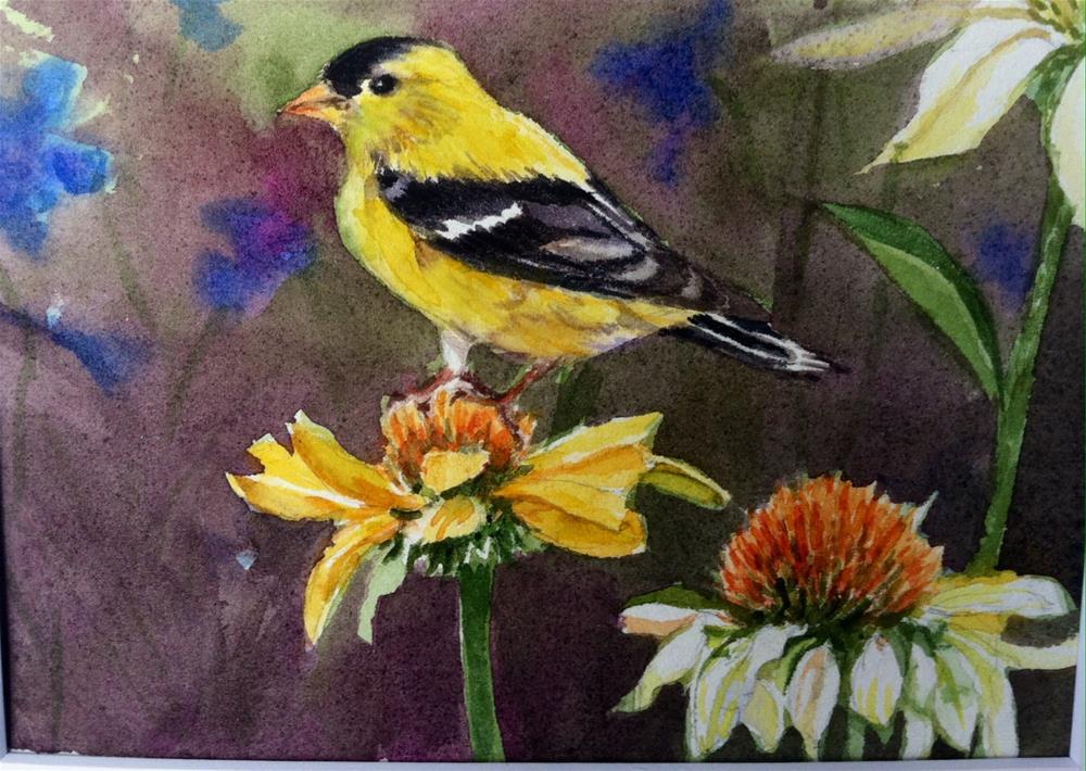 """""""Yellow finch on Coneflower"""" original fine art by Kathryn Kittell"""