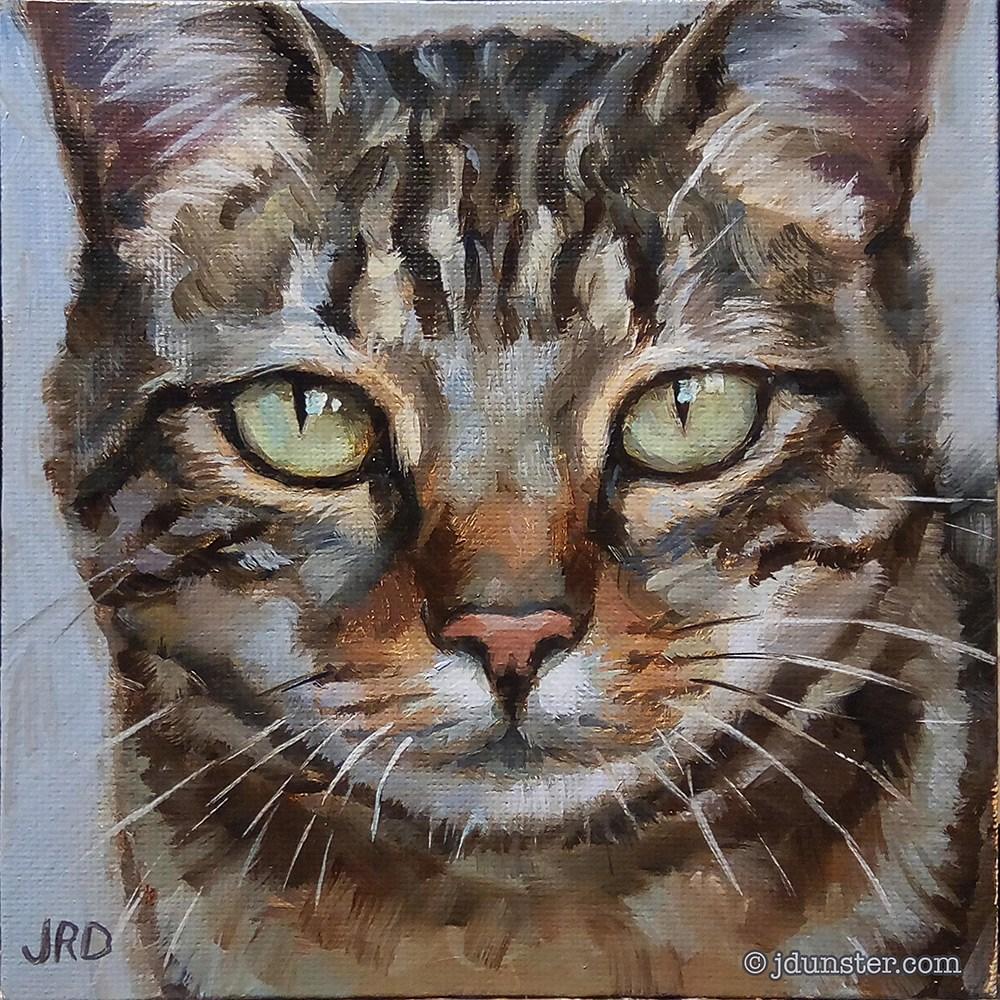 """""""Handsome Tabby"""" original fine art by J. Dunster"""