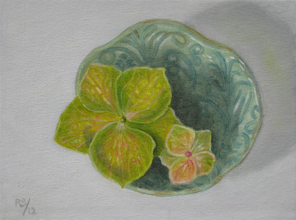 """""""Green Hydrangia"""" original fine art by Pera Schillings"""