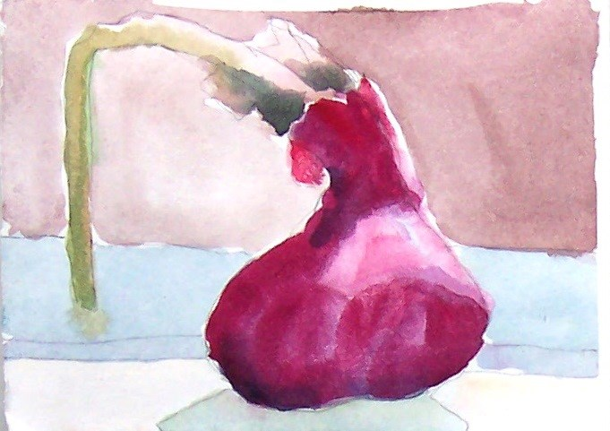 """Watercolor Onion,still life,watercolor,5x5.priceNFS"" original fine art by Joy Olney"