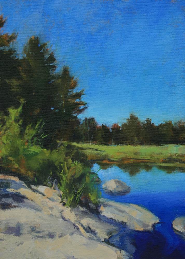 """Riverside Marsh"" original fine art by Jane Robertson"