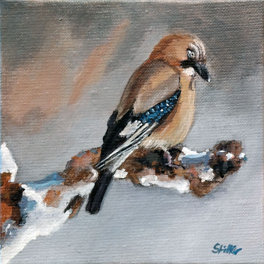 """1590 Young Jay"" original fine art by Dietmar Stiller"