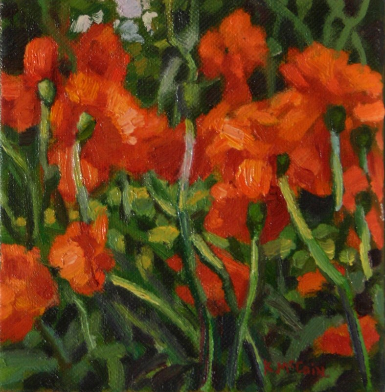 """Poppies in Summertime"" original fine art by K.R. McCain"