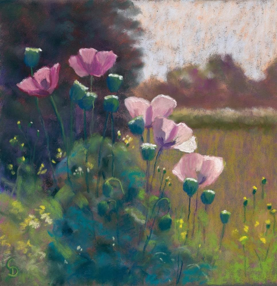 """""""Poppies at High Noon"""" original fine art by Christine Derrick"""