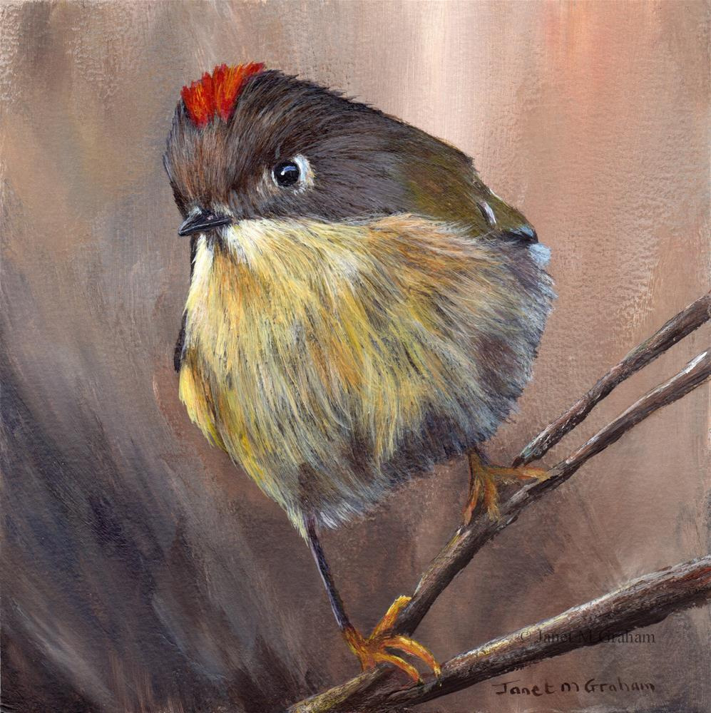 """Ruby Crowned Kinglet No 4"" original fine art by Janet Graham"