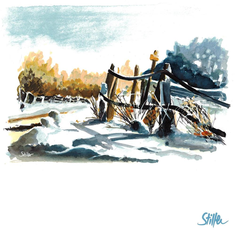 """3418 Winter on the fence"" original fine art by Dietmar Stiller"