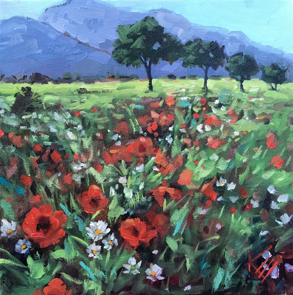 """""""Field of Poppies"""" original fine art by Krista Eaton"""