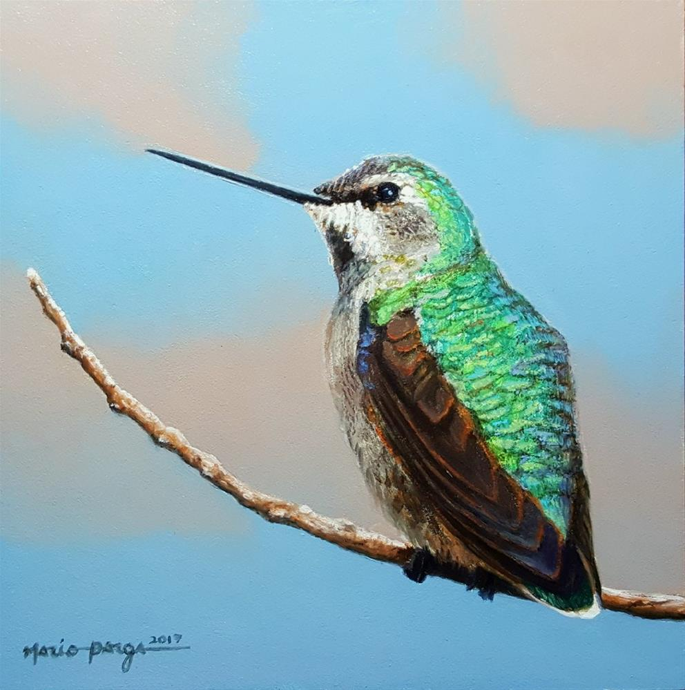 """Anna's Hummingbird"" original fine art by Mario Parga"