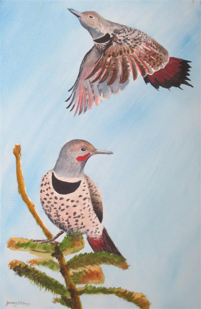 """Northern flickers"" original fine art by Jenny Kinberg"