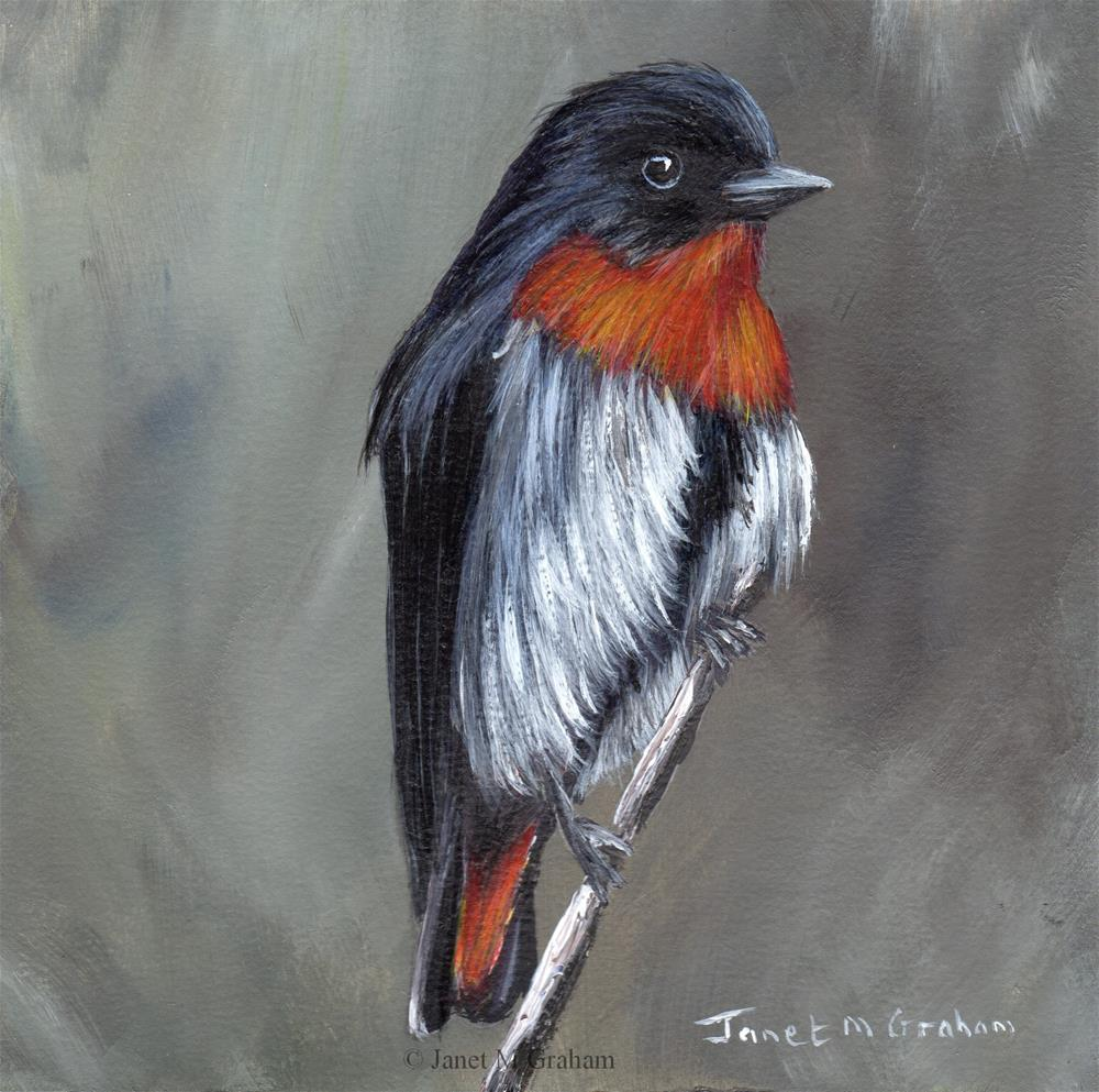 """Mistletoebird"" original fine art by Janet Graham"