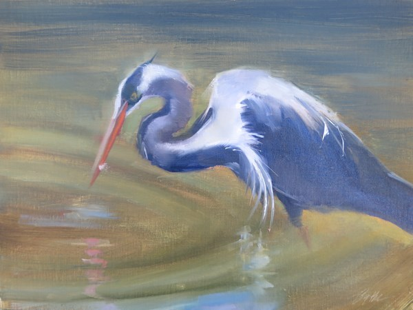"""Great Blue Heron"" original fine art by Beth Bathe"