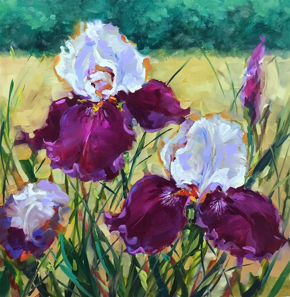 """Blossoms Ablaze Ruby Iris Garden"" original fine art by Nancy Medina"